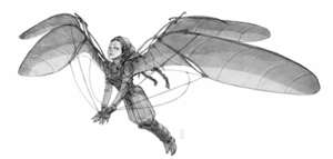 Lilit wings