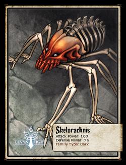 Skelorachnis