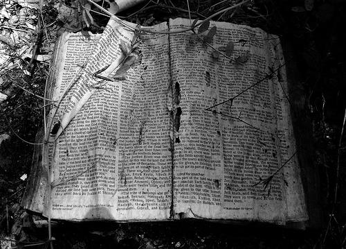 File:Into the Promised Land, Joshua 18, Abandoned Bible, White Oak Bayou, Houston, Texas 0420091320BW.jpg