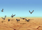 Vulturesgather
