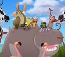 Making Hippo Lanes