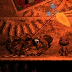 Sackboy and Don Lu's dog.