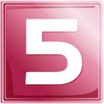 Net5 logo 2007
