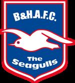 Brighton & Hove Albion FC logo (1998-2000)