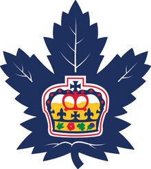 4199 toronto marlies-primary-2017