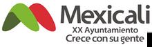 MXLI XX