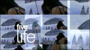 Five Life umbrella (2) 2006