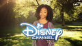 Disney Channel 2012 Logo