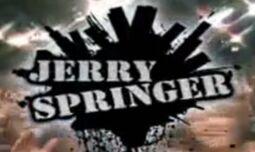 Springer 2008