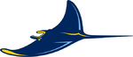 Tampa Bay Rays logo (alternate)