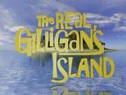 Real gilligans island