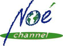 NOE CHANNEL
