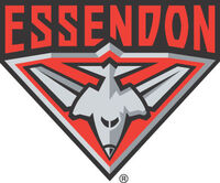 Essendon 1996-