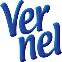 Vernel logo 2006