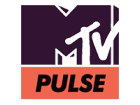 MTV PULSE 2014