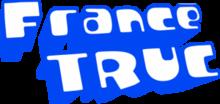 01 logo FT-300x142