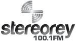 Stereorey100-1 2009