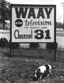 Tv2-22
