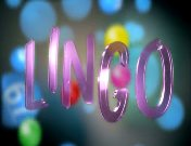 Lingo titel 2008