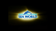 Sea world during commercial
