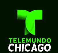 BeFunky telemundowsns followup logo detail.jpg