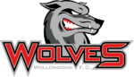 Wollongong FC logo