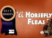 Horsefly fleas
