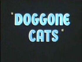 Doggonecats2