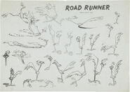 Road-Runner Model Sheet