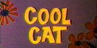 Cool Cat (Short)