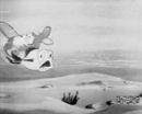 Plane Dippy Screenshot 9