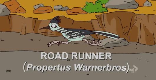File:Road Runner.png