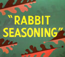 Rabbit Seasoning