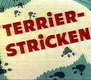 Terrier-Stricken