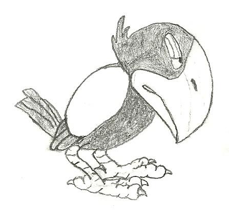 File:Minha Bird.jpg