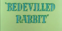Bedevilled Rabbit