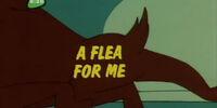 A Flea For Me