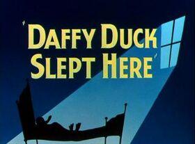 Daffyduckslepthere