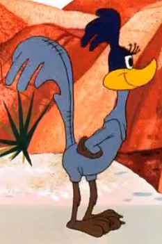 File:Female Road Runner Costume.png