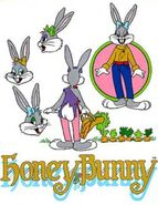 Honey Bunny Model Sheet-1-