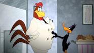 Working Duck (32)