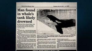 Daniel P Dukes Tilikum Newspaper Article-550x308
