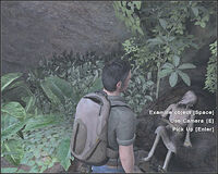 CaveCorpse