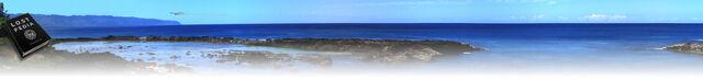 File:Hawaiiback.jpg