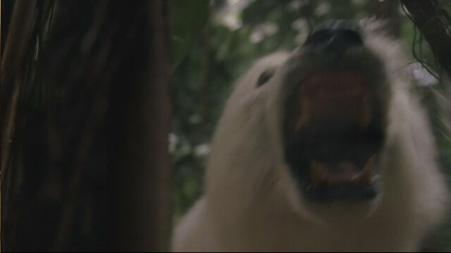 File:1x14-AnimalsAttack.jpg