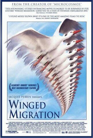 File:Wingedmigration.jpg