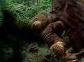 File:Teddyportal.jpg