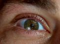 Archivo:M-eye.jpg
