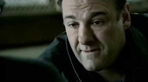 Moving On After the Sopranos