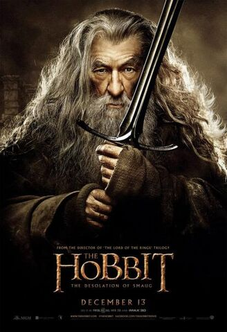 File:The Hobbit- The Desolation of Smaug 25.jpg